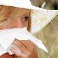 Wiosną i latem najczęściej słychać alergiczne a-psik! Na zdrowie!