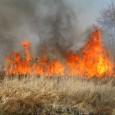 Wypalanie traw jest zagrożone niebezpieczeństwem pożaru, nad którym nie będziemy w stanie zapanować