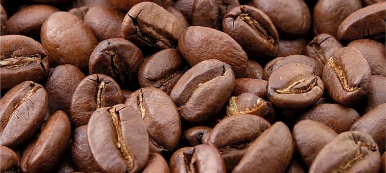 Jest wiele rodzajów kaw i każda z nich ma swoje cechy charakterystyczne - to którą wybierzemy zależy tylko od naszych kubków smakowych