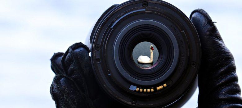 Porady fotograficzne? Warto z nich skorzystać, by wnieść swoje fotografowanie na wyższy poziom zaawansowania
