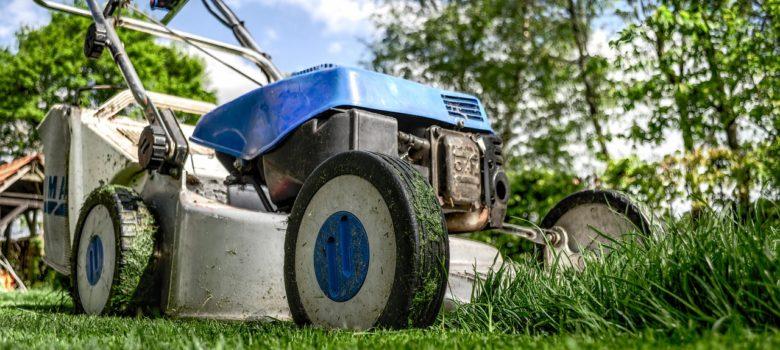 Kosiarka do trawy powinna odpowiadać naszym potrzebom, czyli przede wszystkim szczególnym uwarunkowaniom ogrodu