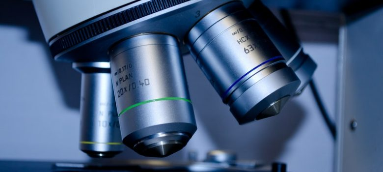 flora bakteryjna jelit może być widoczna pod mikroskopem