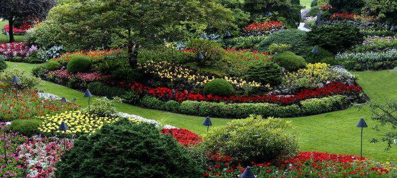 nawadnianie ogrodu - system podlewania trawników